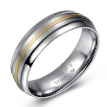 Two Tone Brushed Titanium Band